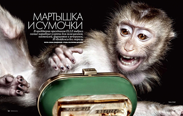 THE MONKEY FOR ELLE